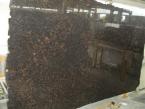 Tan Brown plokštė Turimų plokščių matmenys: 310x185 cm (2009-11-05)