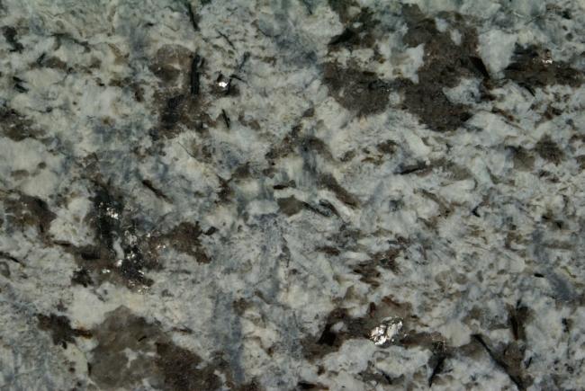 Grey Fox granitas