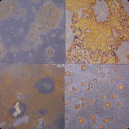Multicolor skalūnas